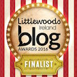 2016 Blog Awards Ireland Finalist