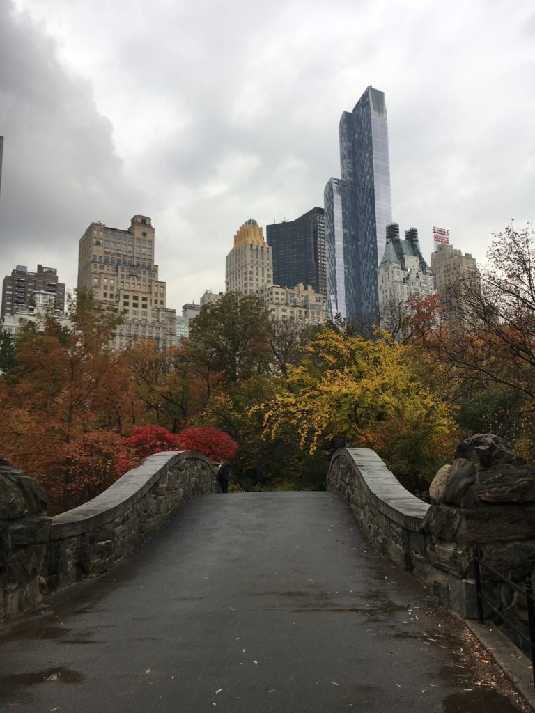 City Stitchette - Central Park