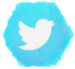 FreckledPast on Twitter
