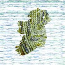 Woolly and Wonderful Hand-dyers in Ireland & Northern Ireland | EvinOK