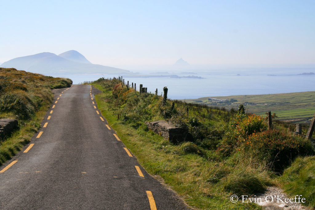 Narrow Dingle Peninsula Road with sea in the distance and rolling green fields to the side. Photo by Evin Bail OKeeffe
