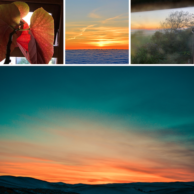 Sunset photos and mood board